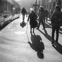 Fotograaf van het Jaar